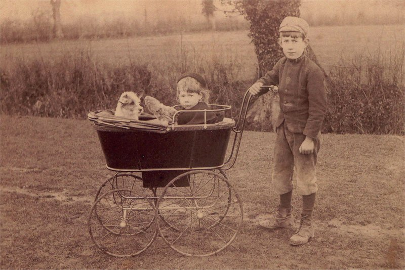 Annie Copping in the pram with her brother Albert